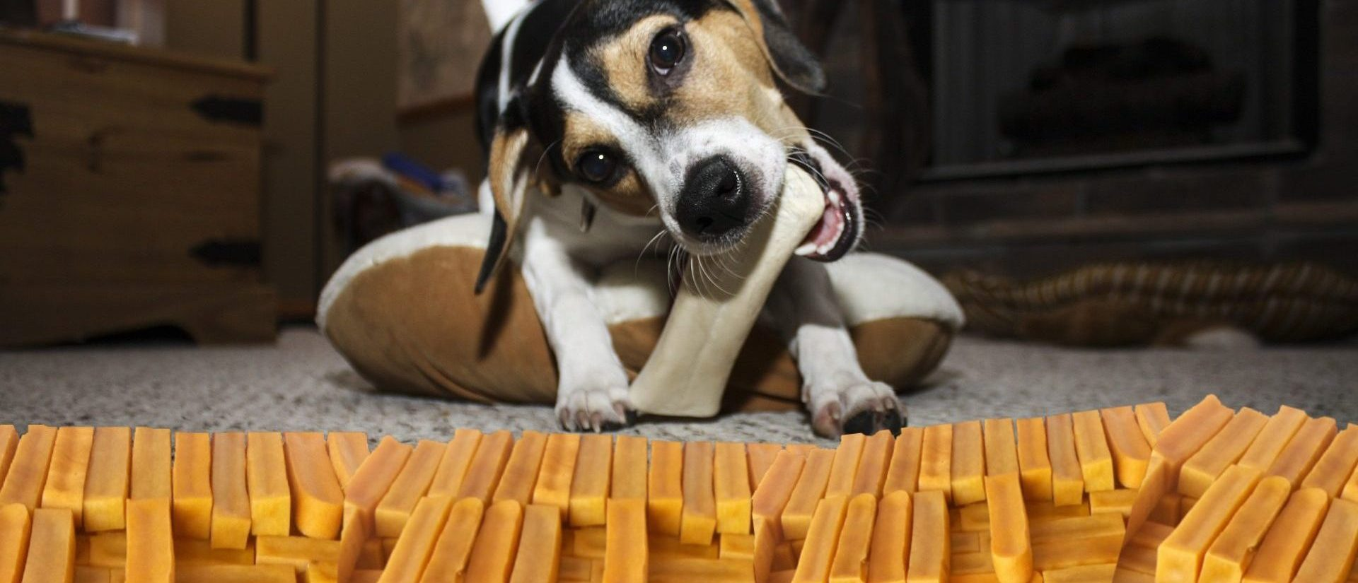 Nepalese Dog Chew Stick